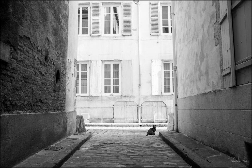 Moulins-16-web